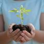 Mudanças de hábitos simples para melhorar o futuro do planeta